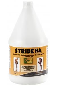 Страйд Гиалуроновая кислота для лошадей (3,75 л)